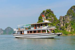 tour halong deluxe 1 ngay